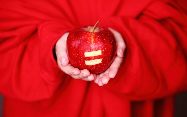 Заставка для - Равенство в разнообразии