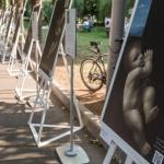 Заставка для - Выставка «Помоги вернуть маму» в Парке Горького