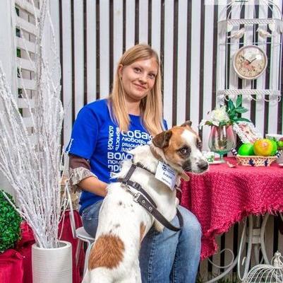 Заставка для - Екатерина Ильченко, помогает приюту для собак