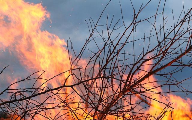 Заставка для - Чтобы остановить пожары на Байкале, нужна ваша помощь