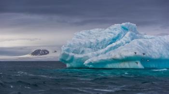 Заставка для - «Русская Арктика» приглашает волонтеров