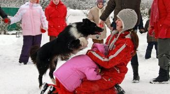 Заставка для - Юлия Соложенцева, волонтер команды «Собаки – детям!»