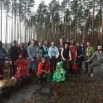 Заставка для - Восстановление леса под Рошалем