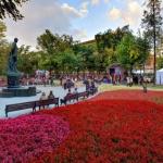 Заставка для - На Тверском бульваре откроется экошкола