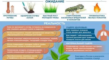 Инфографика МЧС