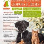 Заставка для - 22 мая в Москве пройдут выставки собак