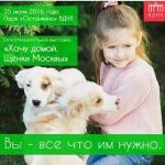 Заставка для - III благотворительный фестиваль «Хочу домой»