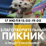 Заставка для - Благотворительный пикник в парке «Сокольники»