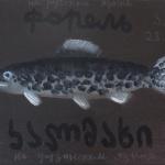 Заставка для - Благотворительная выставка-продажа «Рыбный День» фонда «Детские Сердца»