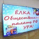 Заставка для - Новогодний праздник в ОП РФ для особенных детей «Редкая елка»