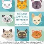Заставка для - Благотворительная акция-выставка кошек «Дорога домой»