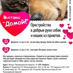 Заставка для - Выставка приютских животных «Домой!»