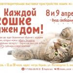 Заставка для - Благотворительная выставка-пристройство кошек «Каждой кошке нужен дом!»
