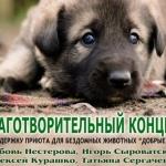 Заставка для - Концерт в поддержку приюта для животных «Добрые руки»