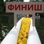 Заставка для - Благотворительный «Утиный заплыв»
