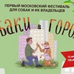 Заставка для - Фестиваль «Собаки в городе»