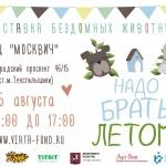 Заставка для - Выставка бездомных животных «Надо брать! Летом!»