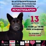 Заставка для - Выставка-пристройство собак из приюта «Счастье Даром»