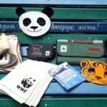 Заставка для - Благотворительная ярмарка WWF