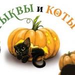 Заставка для - Фестиваль «Тыквы и Коты»