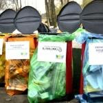 Заставка для - День раздельного сбора отходов в ДК «Делай культуру»