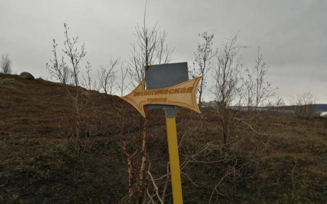 Заставка для - В Мурманске ищут волонтеров для создания новой экологической тропы