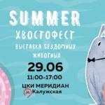 Заставка для - Summer! Хвостофест2019