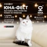 Заставка для - Благотворительная выставка кошек «Юна-Фест»