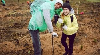 Заставка для - Восстановление лесов в Тольятти после пожара