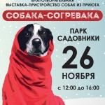Заставка для - Выставка «Собака-согревака»