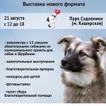 Заставка для - Выставка «Собаки, которые любят»